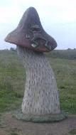 Лягушка на грибочке